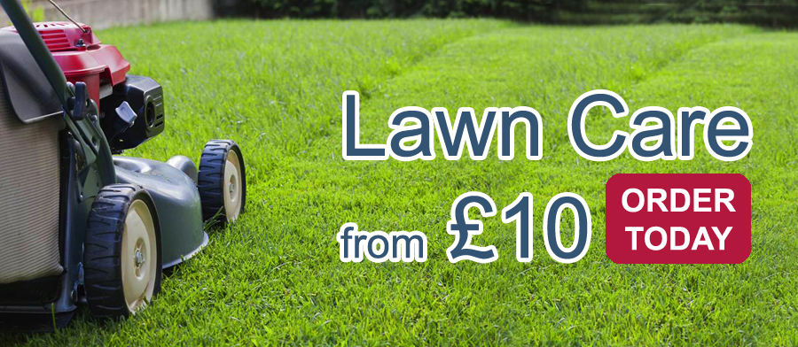 Lawn Care Services Middlesbrough
